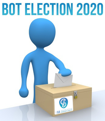 IIBA Election 2020 slider